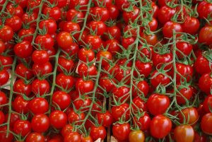 tomatoes-1337408_640