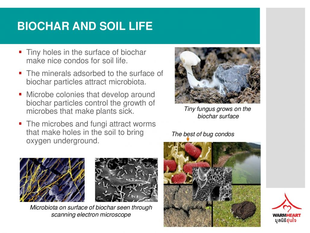 2-biochar-training-part-2-public-release-015