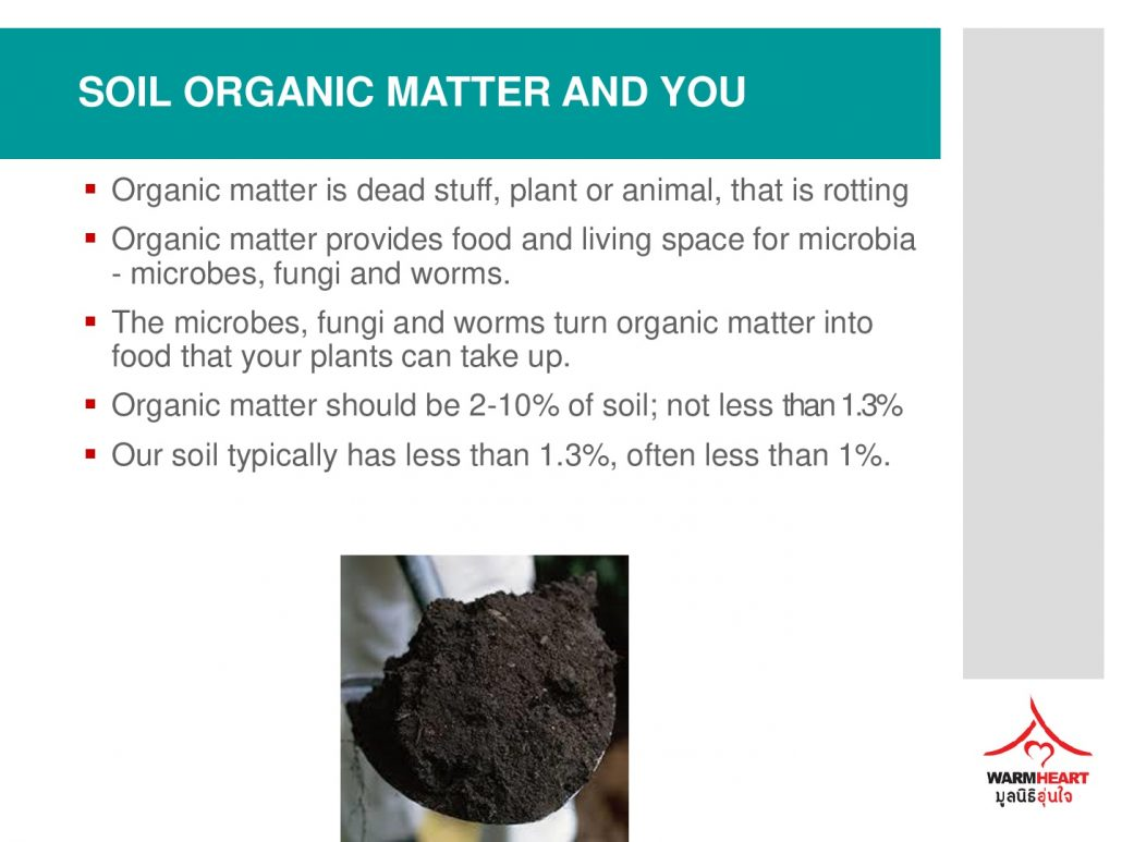 biochar sustainable value