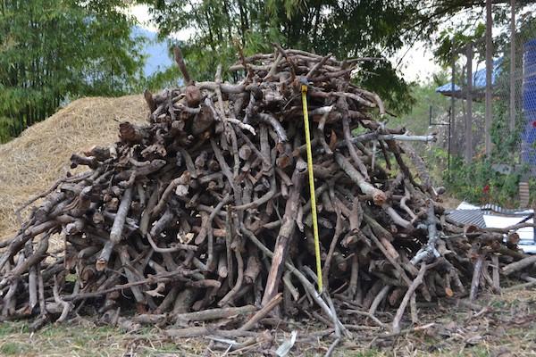 20-fruit-tree-trimming-feedstock-used-in-21