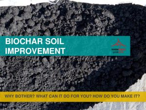 making-biochar-fertilizer-001