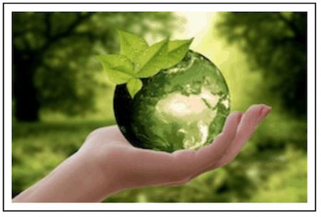 News Archive June 2018 Environmental Progress News