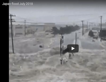 News Archive August 2018 Environmental Progress News