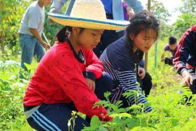 Young Smart Farmer 2018 Visit