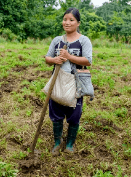 Biochar Paga ready to plant
